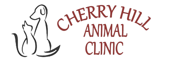 Veterinarians in Westland | Cherry Hill Animal Clinic